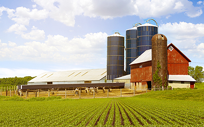 Waupaca Wisconsin Farms For Sale